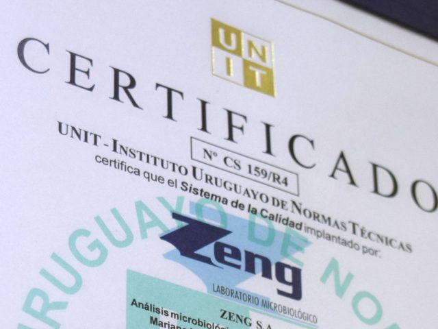 http://www.zeng.com.uy/wp-content/uploads/2017/05/certificado-640x480.jpg